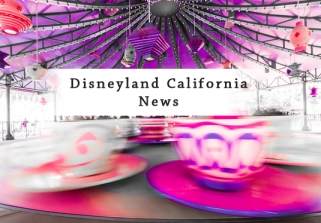 Heidi Klum and Brood Go to Disneyland
