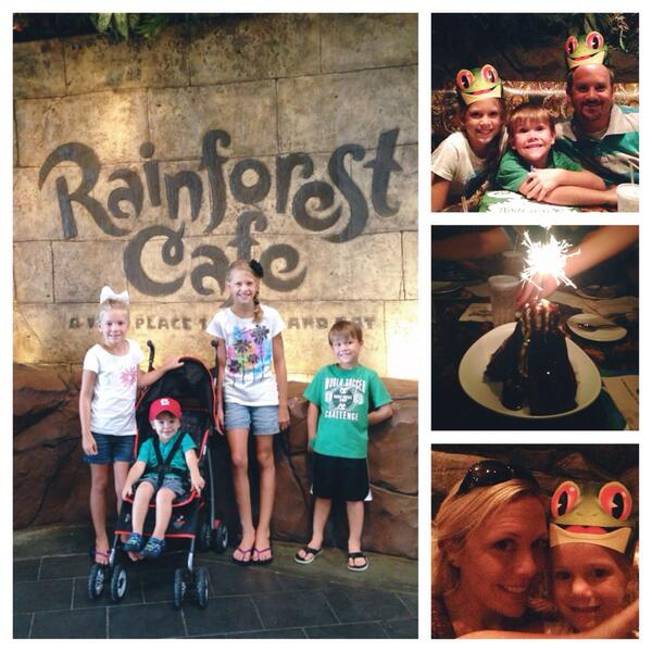 Go Wild at the Rainforest Cafe in Downtown Disney