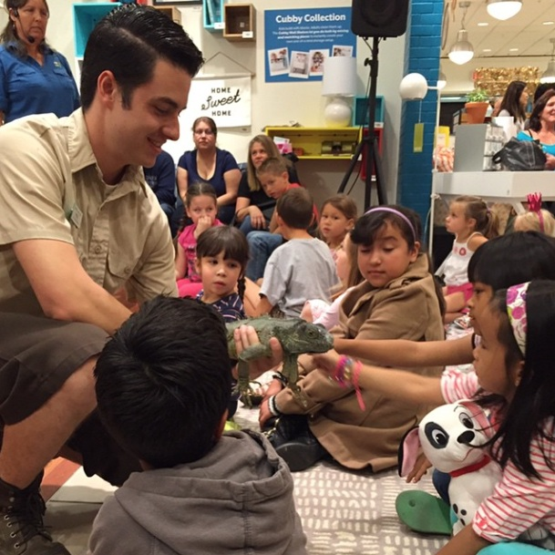 Fun day with reptiles at the Spring Garden Show at @southcoastplaza with the Santa Ana Zoo --- Credit to  The Land of Nod @TheLandofNod